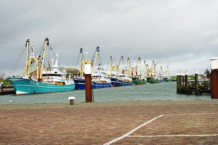 Haven Oudeschild Texel