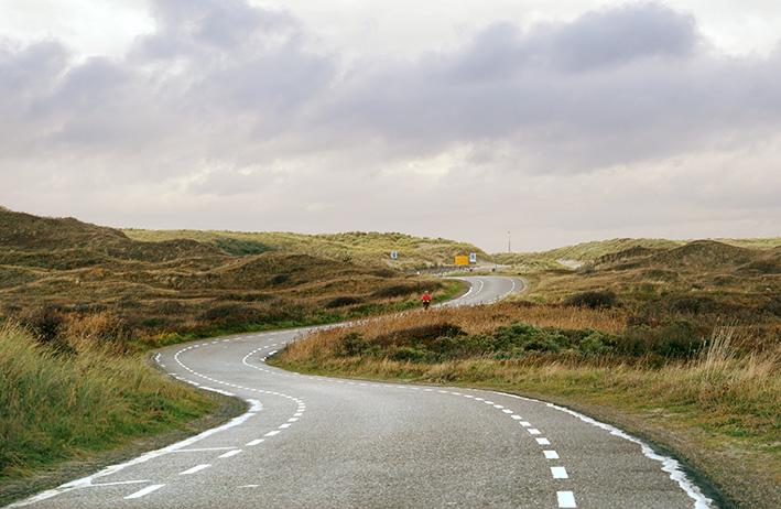 Duinlanschap Texel